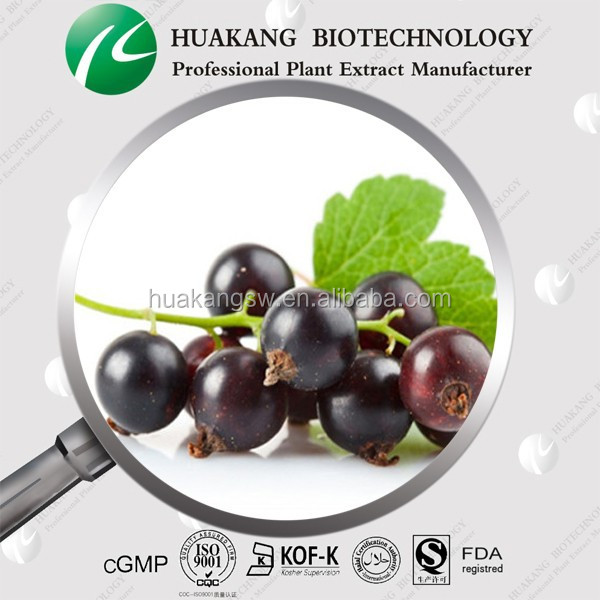 High quality Black Currant Extract Powder/Black Currant Fruit Extract