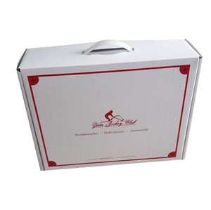 Custom Design Printing Logo Foldable Carton Packaging Box With Plastic Handle