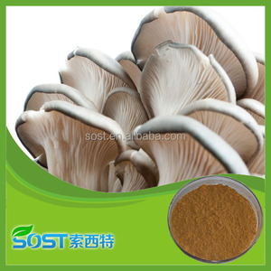 Factory Supply pure natural and high quality Oyster Mushroom Extract