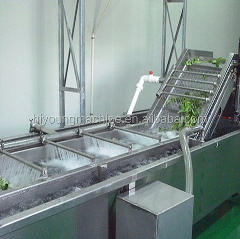 Ozone Fruit and Vegetable Washer /Vegetable Washing Machine