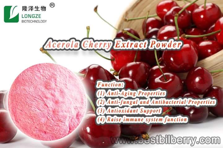 Good water-soluble <strong>fruit</strong> powder acerola cherry powder VC