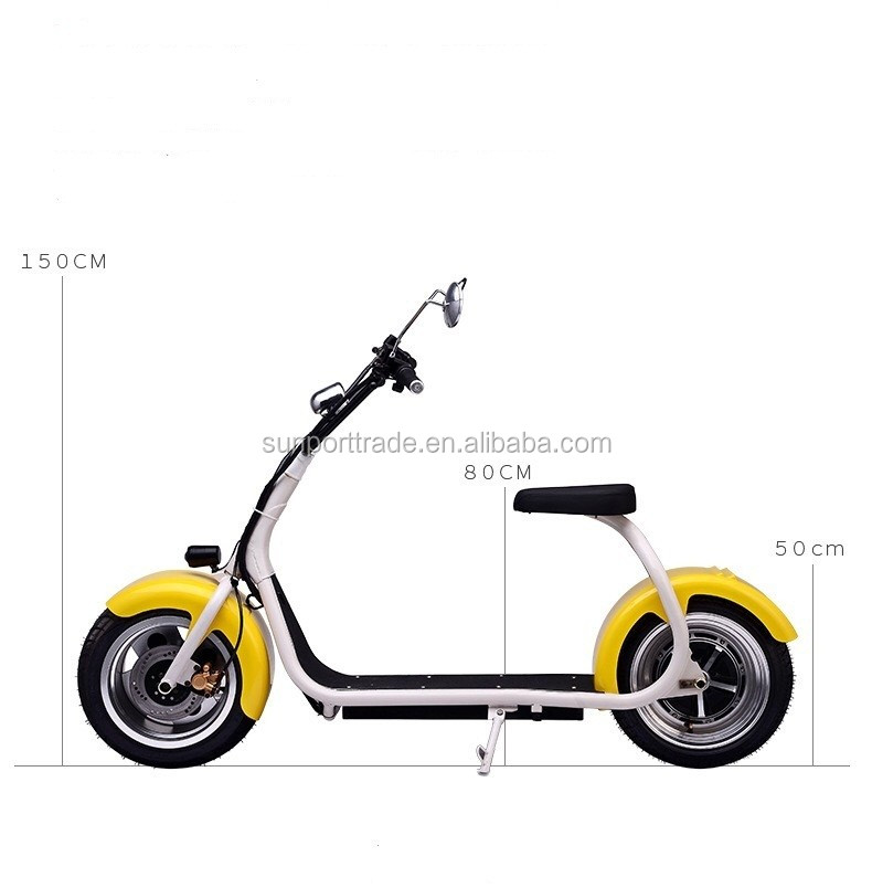 High Quality Cheap Price-Adult Self Balancing Electric Citycoco Scooter/Autobike with Hydraulic disc brakes