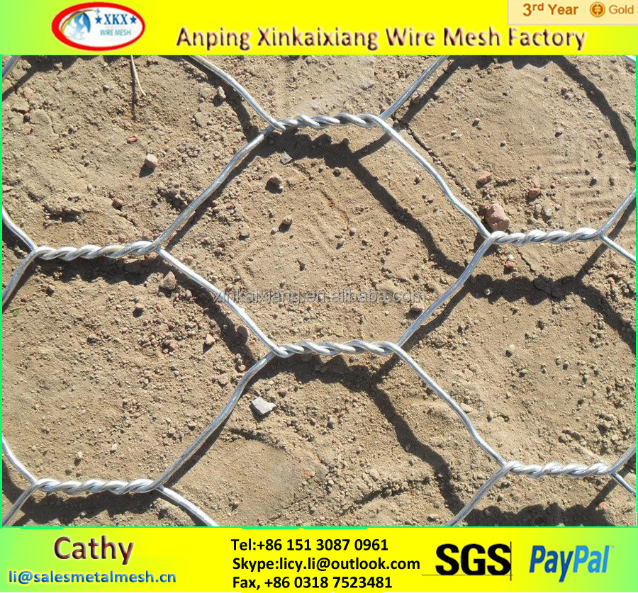 Anping Factory Chicken Wire Mesh/Hexagonal Wire Mesh
