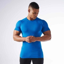 Wholesale high quality custom gym wear dry fit mens t-shirt 2017