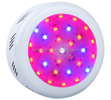 Factory direct sale Mini UFO 300w Full Spectrum LED Grow Light for indoor microgreens/orchid plants