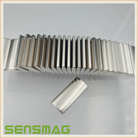 Neo magnet arc shape with epoxy plated Nickel plated for motor