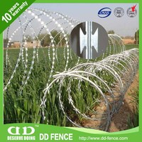 Cost effective cochrane/coiled razor wire from China (factory) /DD-Fence for sale