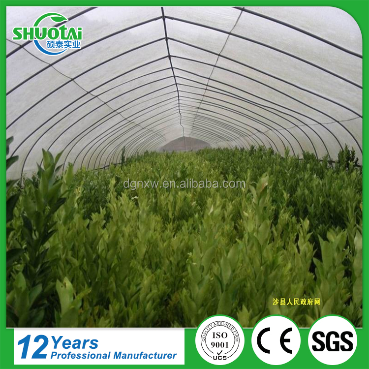 3 Layers Co-Extruded 200 Micron Uv Resistant Plastic Film For Greenhouse