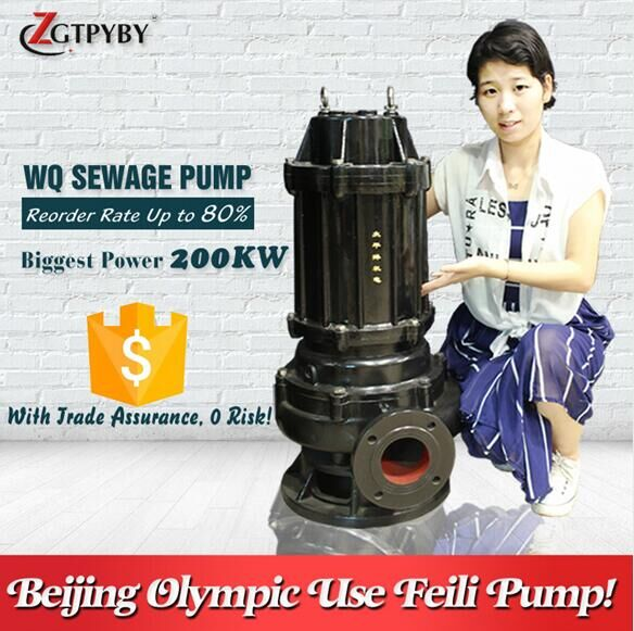 "8"" heavy duty cast iron sewage trash pump waste water sump pump submersible sewage pump"