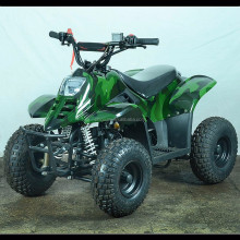 50cc/110cc High Quality ATV CE