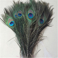 Hot sale 25-120cm Natural Peacock Feather With Eyes