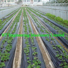 High Quality LLDPE With Functional Additives Agriculture Black Plastic Film
