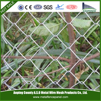China galvanized cheap chain link dog kennels