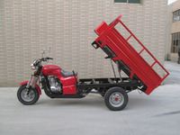 Heavy Loading Pedal/Gas Motor Tricycle use for Cargo