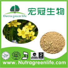 Natural Cat's Claw Powder / Cats Claw Extract / Uncaria tomentosa