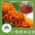 GMP ISO Approved 100% Natural Lutein Supplier