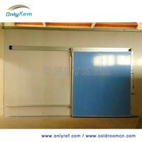 Sliding door for blast freezer cold room