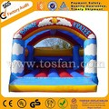 PVC inflatable bouncing castle jumping castle inflatables A1026