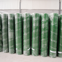 30m Length 1/2 Inch Plastic Coated Welded Wire Mesh