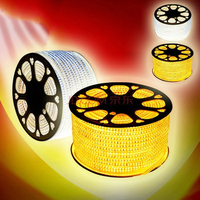 110 -120 V 220V AC IP44 120 Units 3528 SMD Dimmable Flat Flexible 5050 rgbw led flexible strip