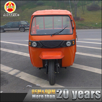 China supply curb weight 450kg 3 wheel adult motorized petrol tricycle in india