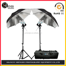 800W portable photo studio kit