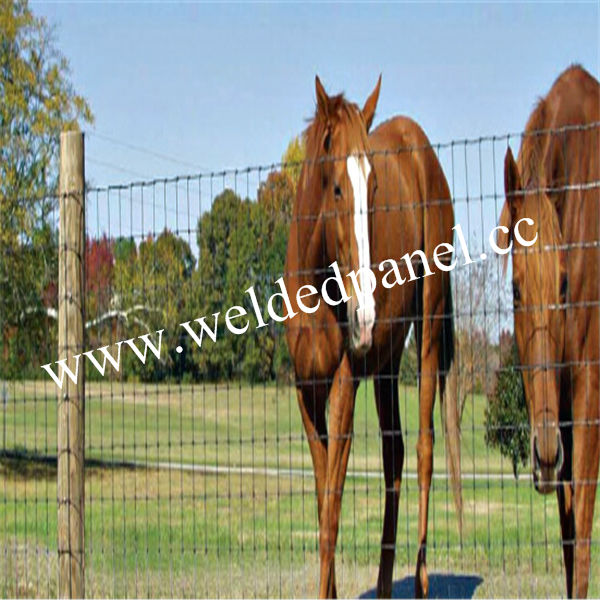 High quality cheap horse fence cow buy