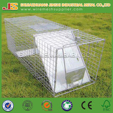 Collapsible Live Trap Live Raccoon Animal Wire Trap Cage