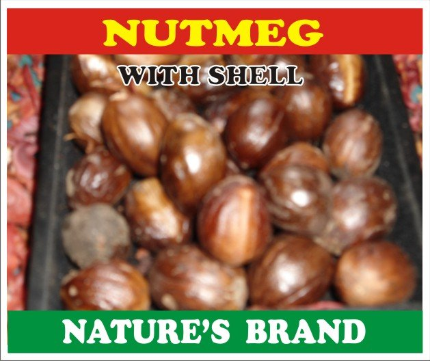 Best Quality NUTMEG from Sri Lanka