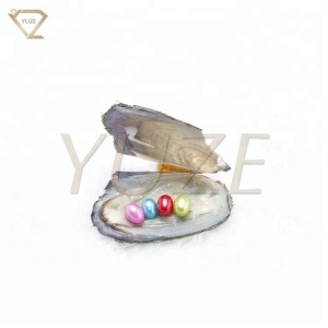 Yuze Superior quality 6-8mm original brown pearl oysters with pearls