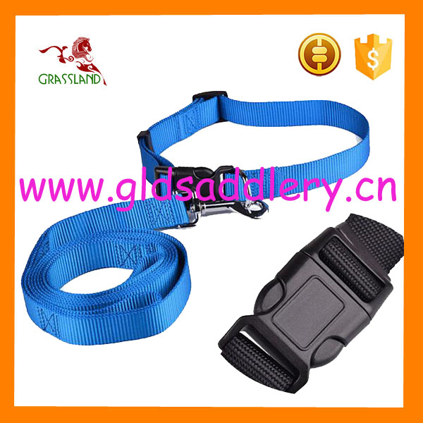 Eco- friendly Nylon webbing Dog leash and collars for dog