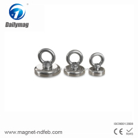 Hot Sale N35 Rare Earth Strong Magnet Hooks, Hooks with White Injection Molding