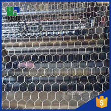 low carbon green pvc coated hexagonal chicken wire mesh factory