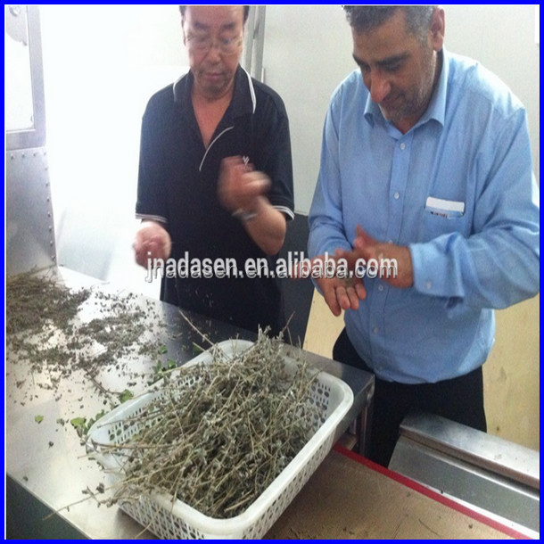 stevia / tea leaf drying and sterilization machine