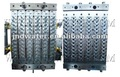 Plastic Bottle Preform Injection Mould