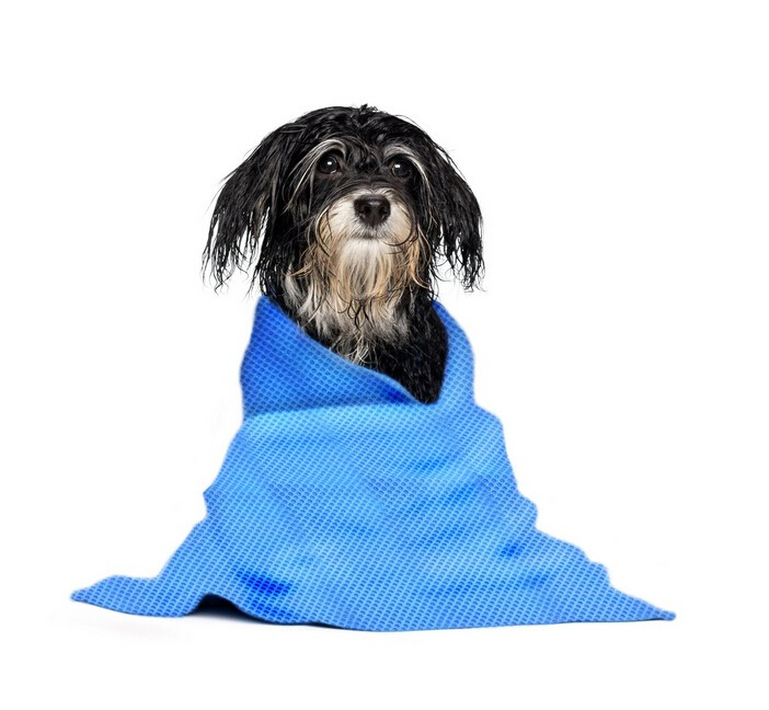 Microfiber pet cooling Towel / Microfibre Detailing drying Cloth
