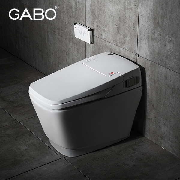 Bathroom ceramic smart toilets with built in bidet buy for Wc inteligente