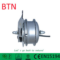single shaft hub motor 24v 250w 36V250W front motor with roller brake