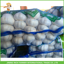 New Crop China Price Pure White Garlic For Middle East Market