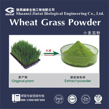 10:1 20:1 best wheatgrass powder
