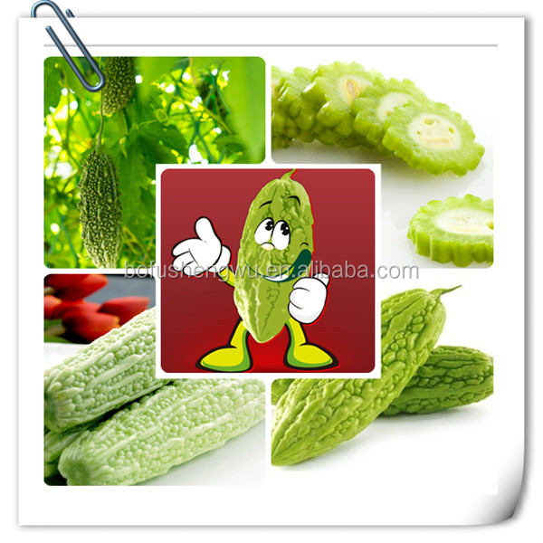 bitter melon extract powder/extraction of charantin bitter melon/bitter melon leaves extract