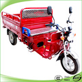 Fashionable 125cc two person trike tricycle
