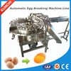 /product-detail/egg-liquid-separating-equipment-egg-breaking-and-liquid-separating-machine-with-high-liquid-extraction-rate-60148507509.html