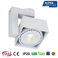 Dimmable Adjustable 28W COB LED Ceiling Surface Spot Light with HEP driver