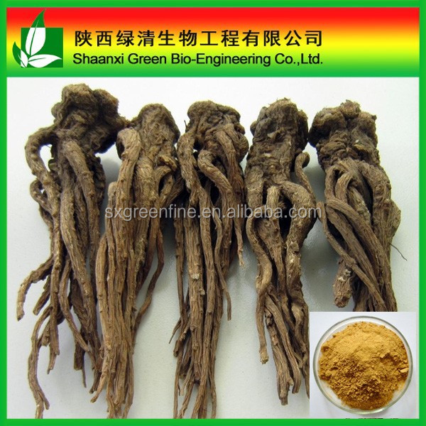 Manufacturer offer Natural dried dong quai extract powder for hair care