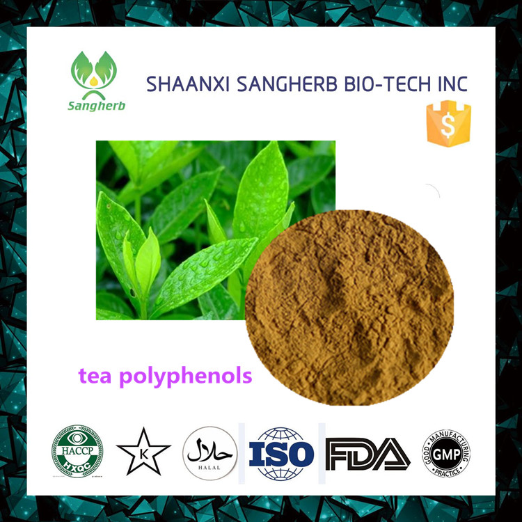 Top grade favorites compare 98% bio green tea extract / tea polyphenols catechins egcg for skincare wholesale