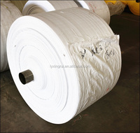 Polypropylene white flour sack fabric for PP woven bags