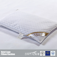 Simple And Elegant Buckwheat Pillow,100% Plain Cotton Pillows Filling With Buckwheat Shell,Diamond Quilted Pillows