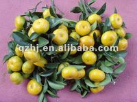 fruits, fresh nanfeng mandarin orange