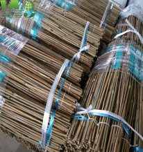 Wy-083 Nature Dry Straight Rattan Bamboo canes for sale
